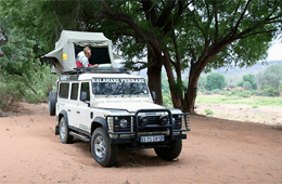 Apex Tours & Safaris